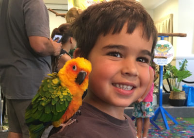 Photos with the Birds at Ashmore Palms' Guest Morning Tea