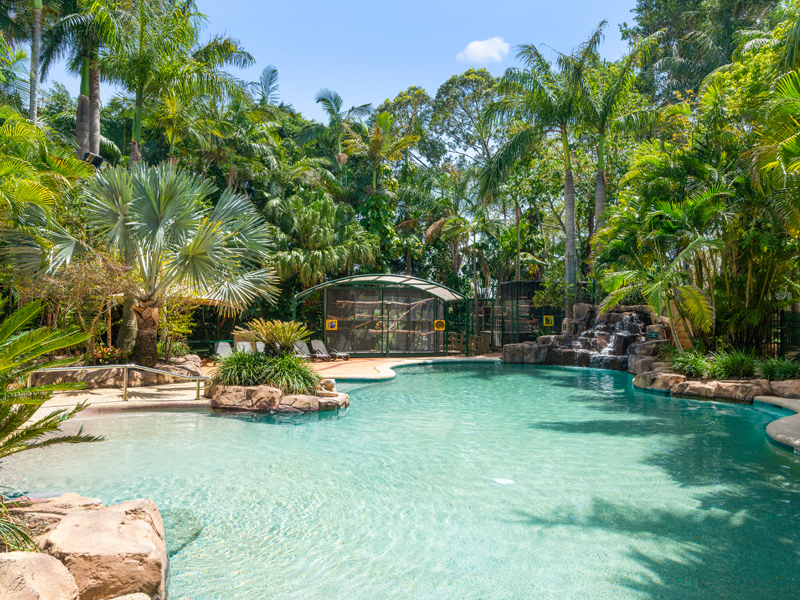 Tropical Waterfall Swimming Lagoon at Ashmore Palms