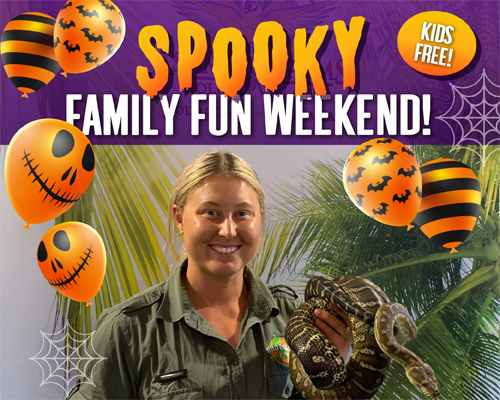 Spooky Family Fun Weekend at Ashmore Palms Gold Coast